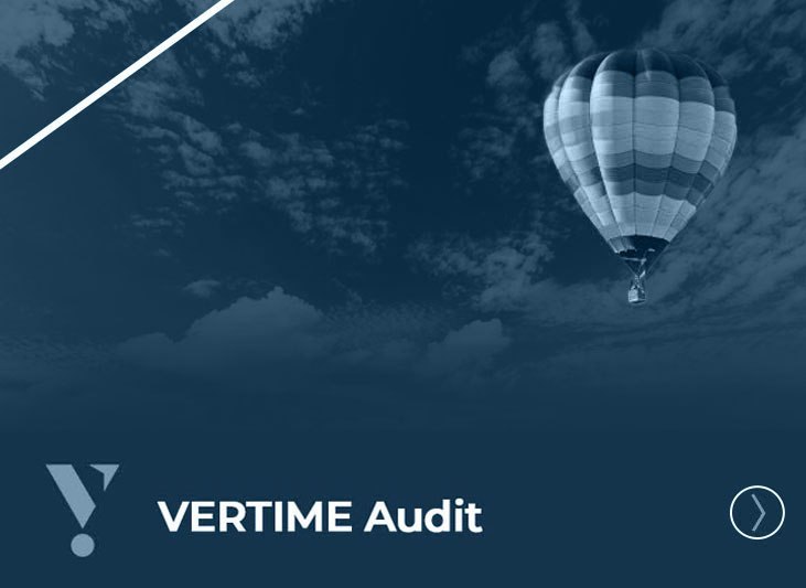 Vertime audit